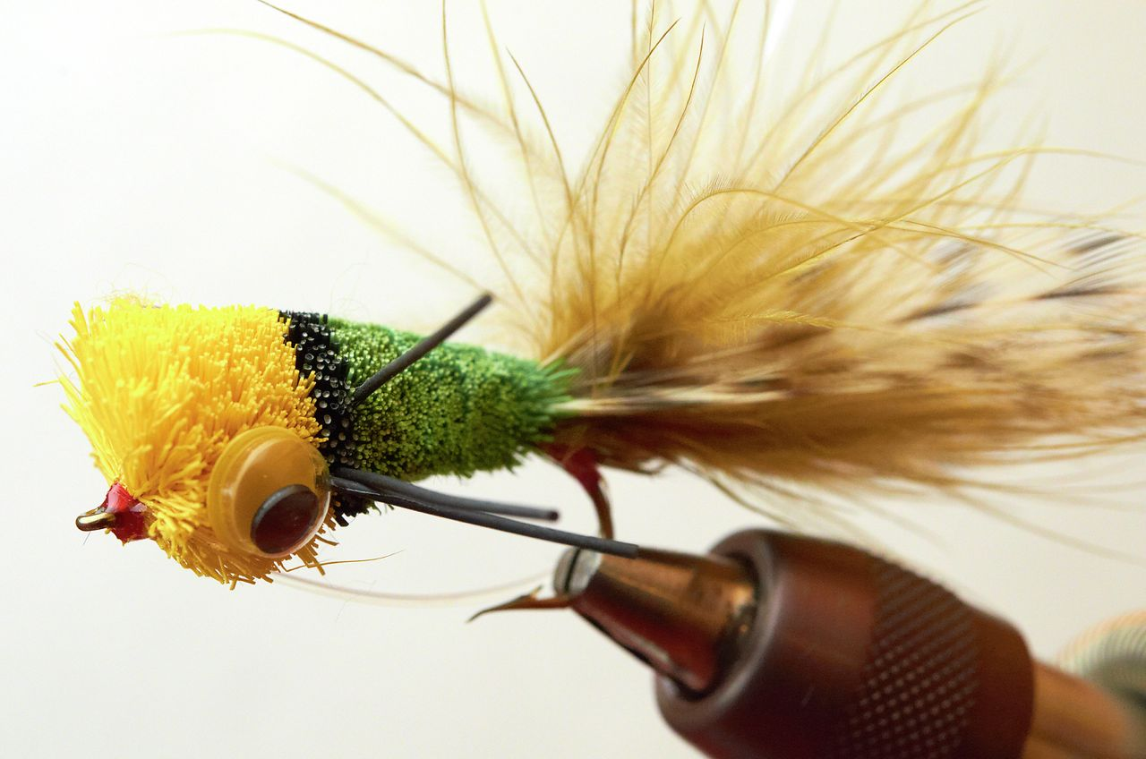Poppin for bass moose knuckle fly fishing for Fly fishing poppers